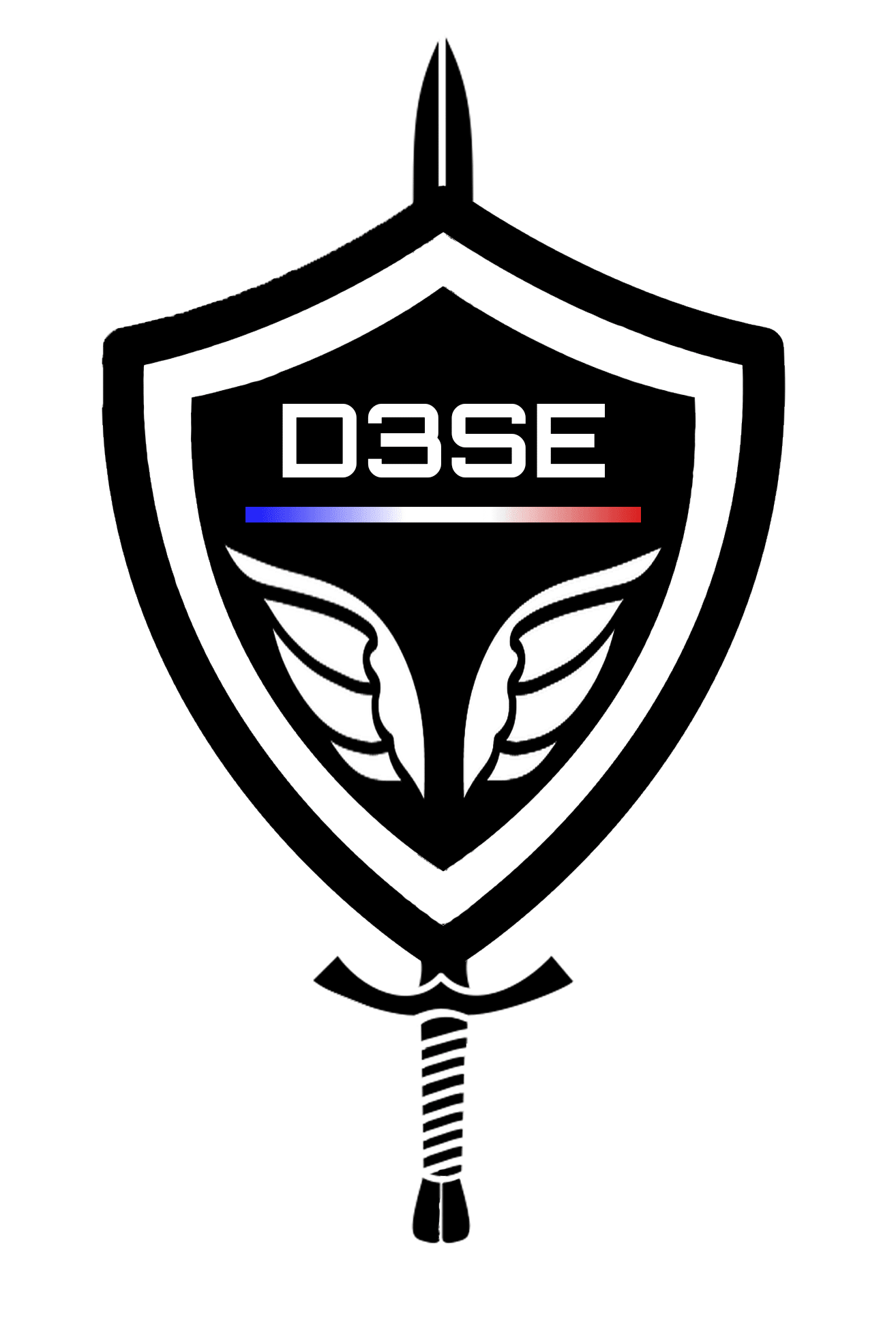 D3SE_logo